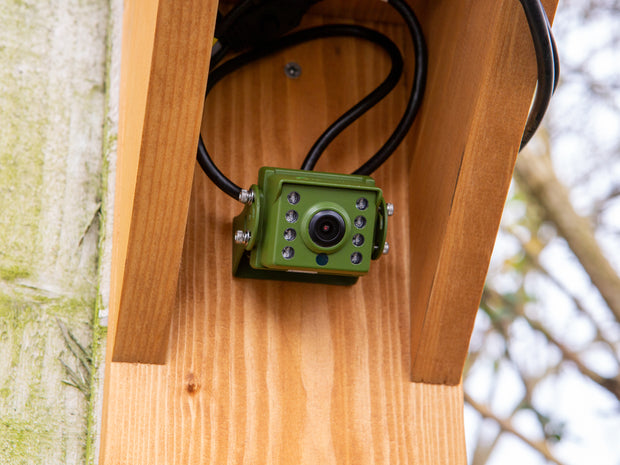 HD Outdoor Bird Feeder Camera Kit with Wooden Feeding Station