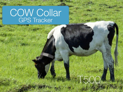GPS Tracker with Collar for Large Size Animals
