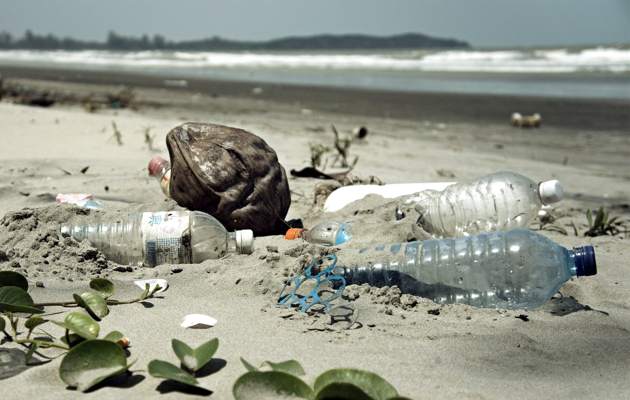 plastic bottles on the beach