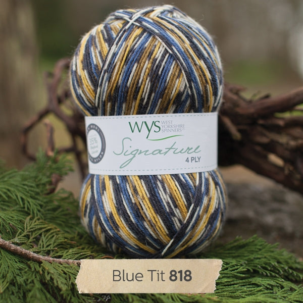 Signature 4ply - Blue Tit