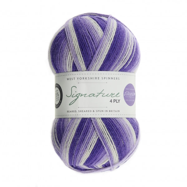 *NEW* Signature 4ply -  Winwick Mum - Hidden Gem