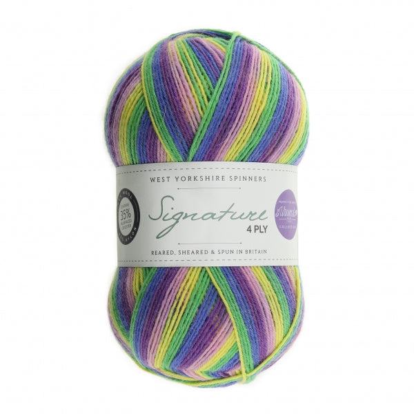 *NEW* Signature 4ply -  Winwick Mum - Wildflower