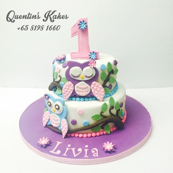 Whimsical Owl Kake