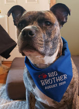 Load image into Gallery viewer, Personalized Baby Announcement Dog Bandana, Big Brother Dog Bandana