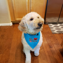 Load image into Gallery viewer, Embroidered Reversible Dog Bandana, Blue The Snuggle is Real Dog Scarf with Snap, Dog Mom Gift