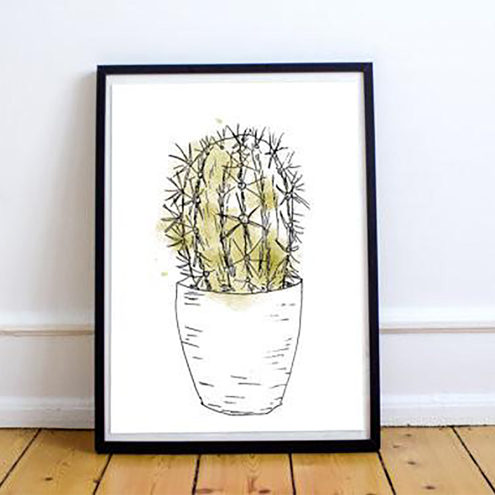 Affiche - Cactus Golden Barrel (9647639440)