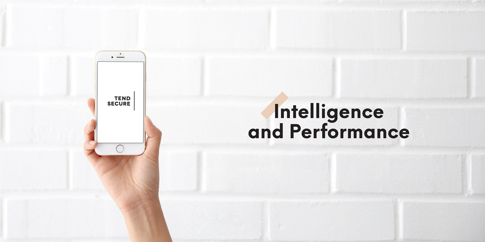 Intelligence and Performance