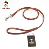 4 Foot Genuine Leather Dog Leash