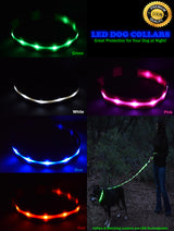Premium LED Dog Collar - Best Lighted Dog Collars