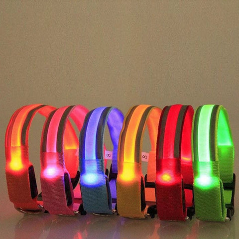Light-Up Neon Dog Collar