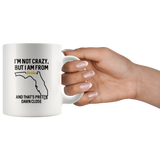 I'm not Crazy, but I am from Florida and that's pretty darn close. mug 11 oz.-Drinkware-Unlawful Threads