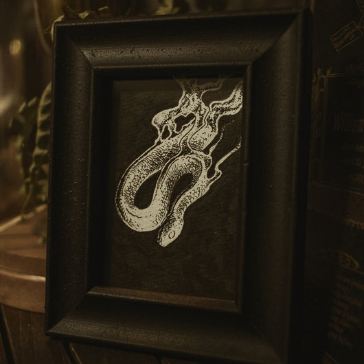 Ghost Snake Original Illustration - Framed
