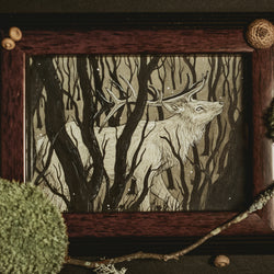 Into the Dark Forest Original Illustration - Framed