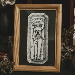 Cabinet of Curiosities Original Illustration - Framed