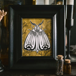 Moth Original Illustration - Framed