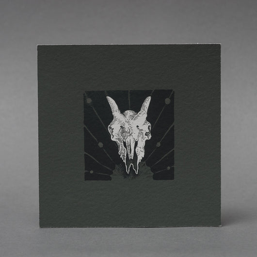 Sheep Skull Art Print