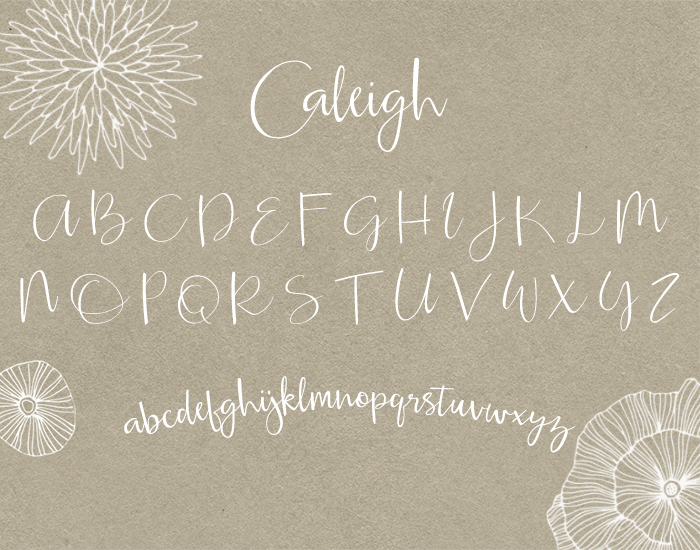 Caleigh Modern Calligraphy Script Font Characters