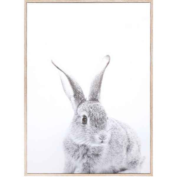 Rabbit Wall Decor