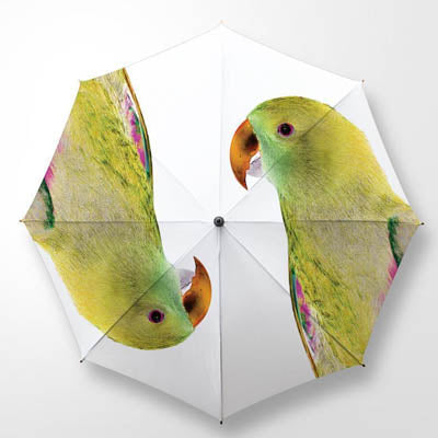 Clinton Friedman BIRDS OF PARADISE UMBRELLA