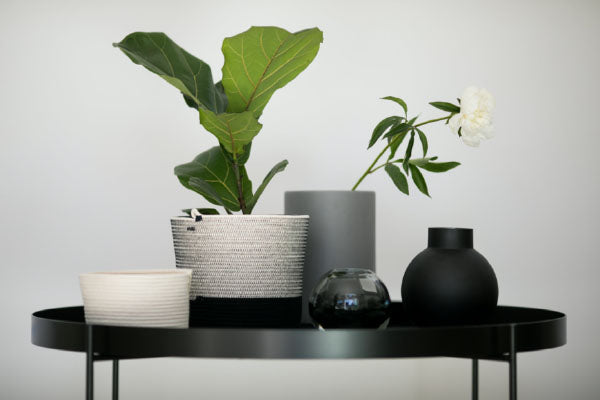 Mia Melange baskets and planters in black and white styled on a side table. Mia Melange products available at Sarza home goods and furniture store in Rye New York.