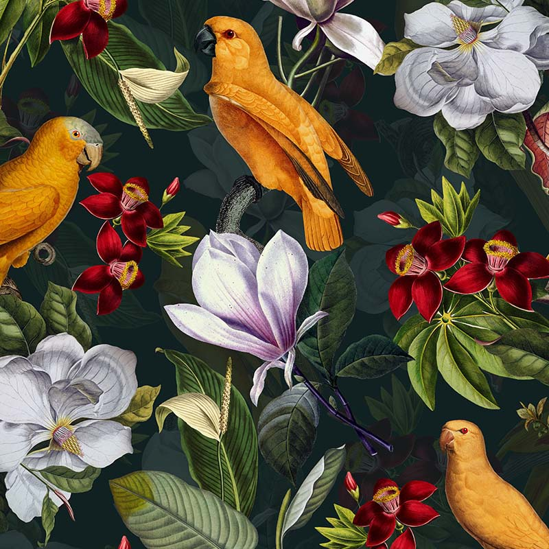 Yellow Parrots In Tropical Flower Magnolia Jungle – on petrol by Robin Sprong at SARZA. Botanical, Floral, Robin Sprong, Tropical, Uta Naumann, Wallpaper, Wildlife