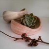 MANG BOWL by Coco Africa Homeware. This wooden bowl is hand-turned giving it a unique and organic shape.