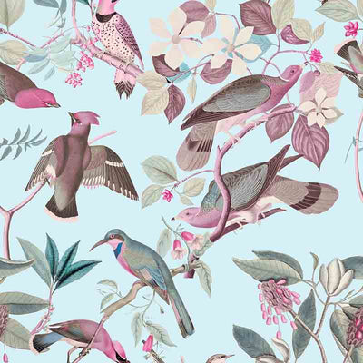 Vintage Birds – Powder