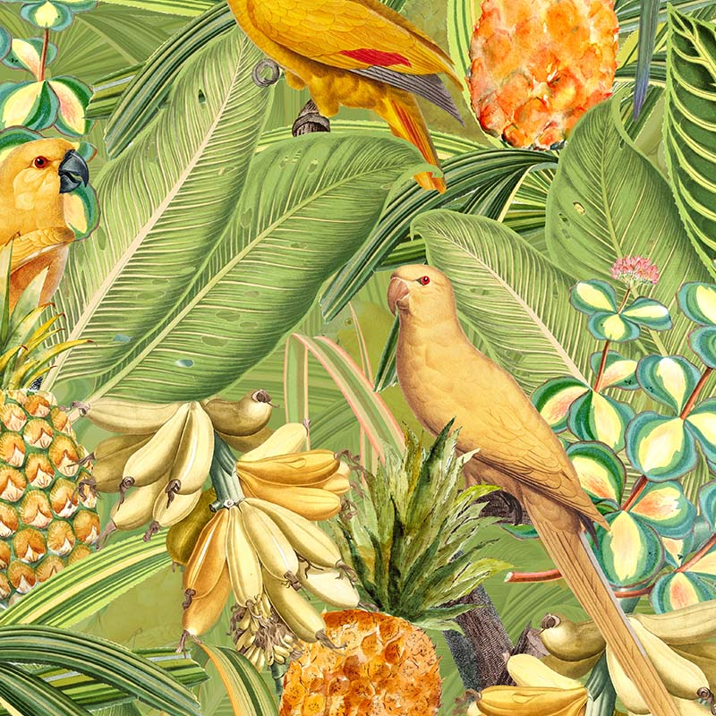 Colorful Birds in Jungle with Bananas