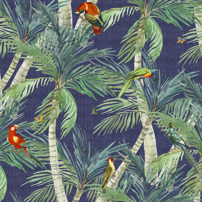 Palm Exotic Birds