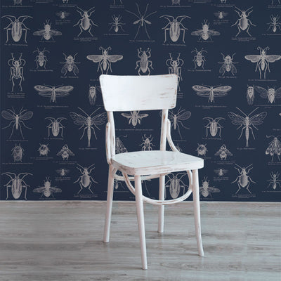 Insect – Blue and Cream by Robin Sprong at SARZA. Love Milo, Robin Sprong, Wallpaper, Wildlife