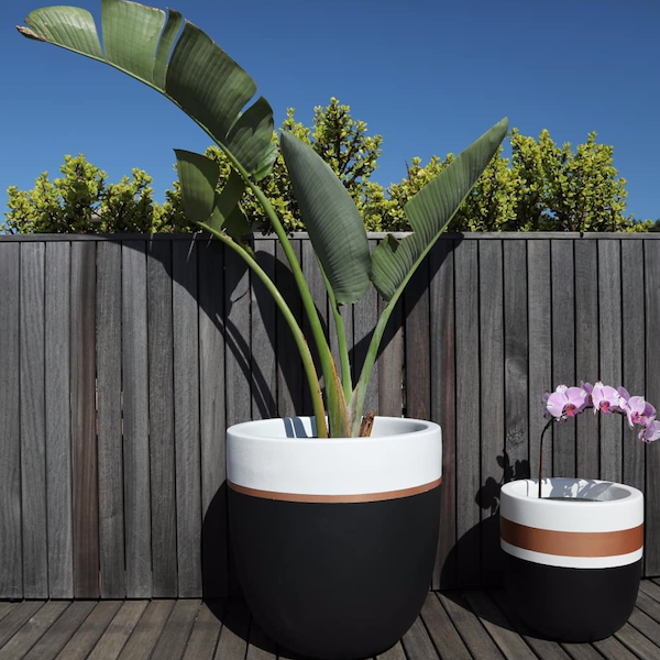 THE ISABELLA POT by Seed Store at SARZA. decor, homeware, Isabella Pot, Outdoor, planters, Seed Store