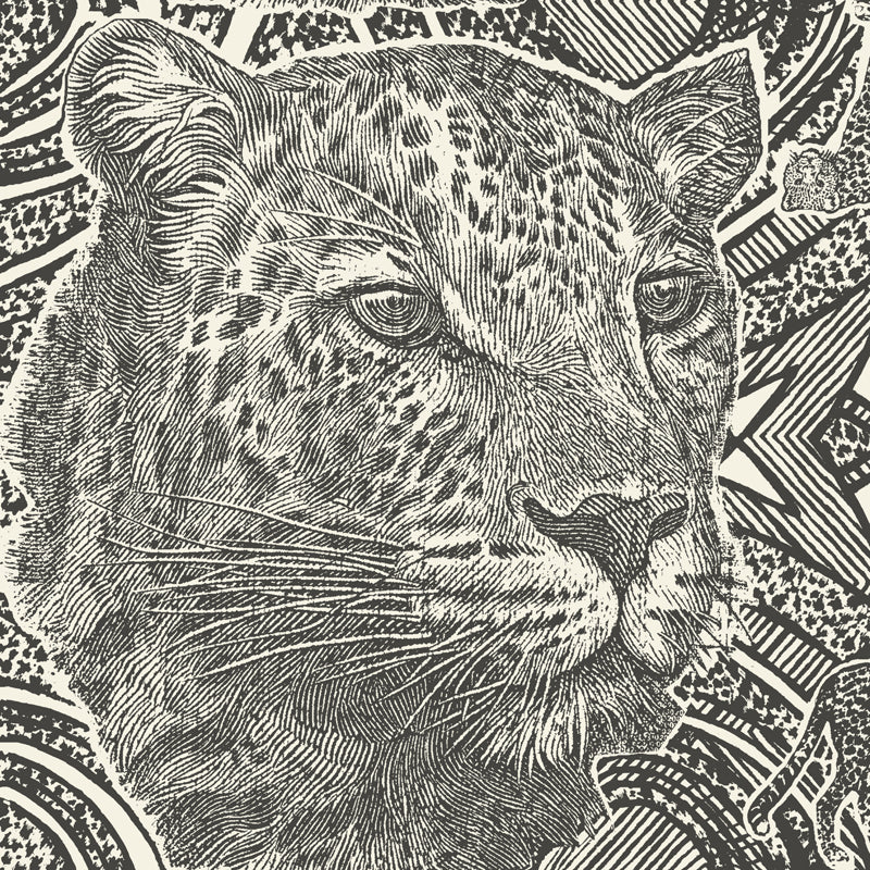 Money Leopards Charcoal