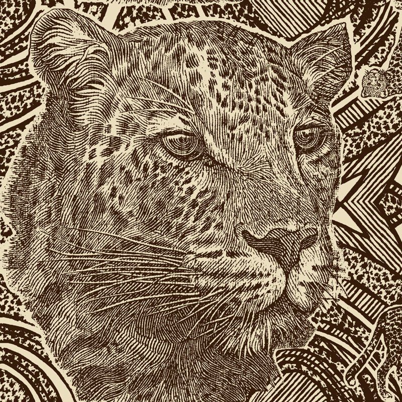 Money Leopards Mud Grass