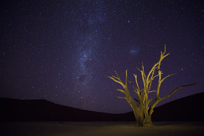 Night Sky DeadVlei Namibia