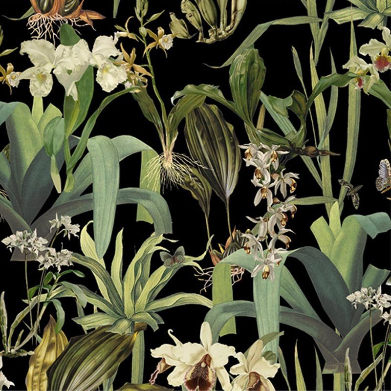 Orchid Black by Robin Sprong at SARZA. Botanical, Floral, Robin Sprong, Soil & Co., Wallpaper