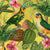Parrots with Orchids and Hibiscus in Jungle