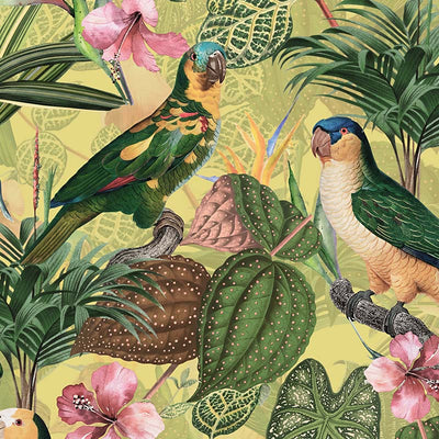 Parrots with Orchids and Hibiscus in Jungle – Pale