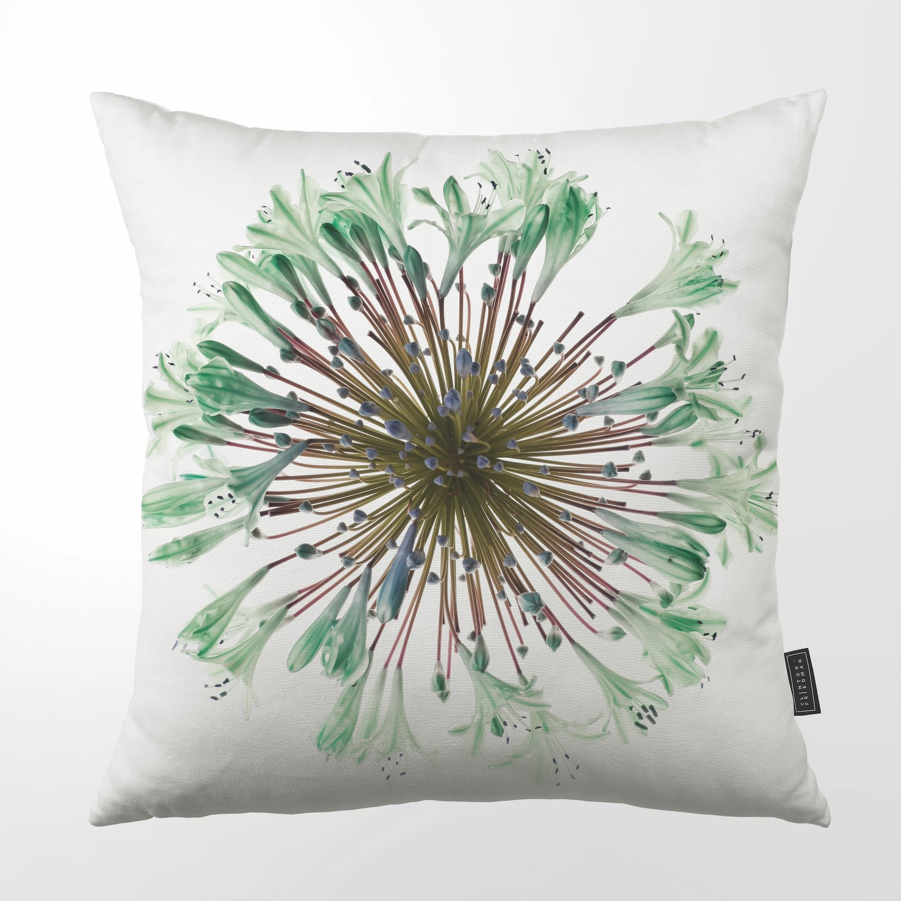 CLINTON FRIEDMAN USA NEW YORK GREEN AGAPANTHUS THROW PILLOW