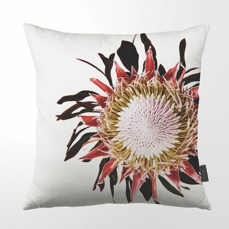 "PROTEA FACE THROW PILLOW by Clinton Friedman at SARZA. 22"", CF-TP-PRO-FAC, Clinton Friedman, cushion cover, homeware, Inflorescence, protea, protea face, SC600Z-002, scatter cushion, throw pillow, throw pillows"