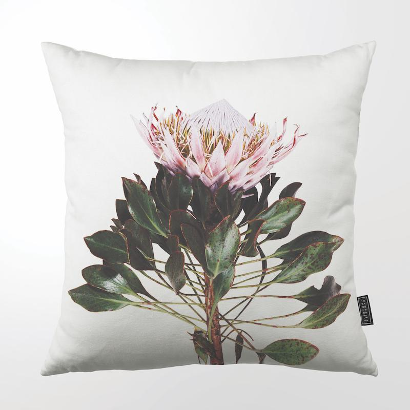 CLINTON FRIEDMAN USA NEW YORK PROTEA ON STEM THROW PILLOW