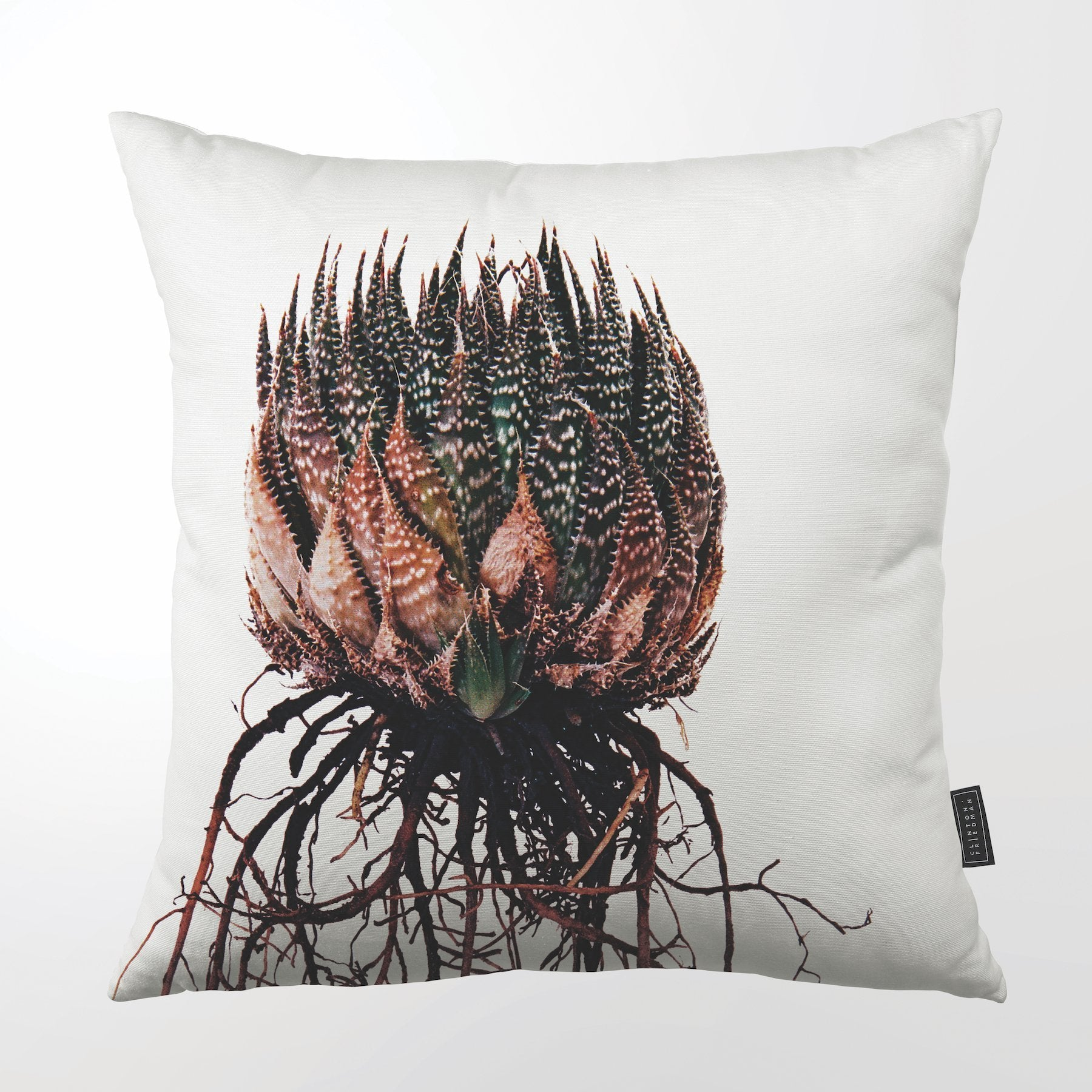 CLINTON FRIEDMAN NEW YORK USA ARISTATA ALOE THROW PILLOW