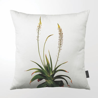 "FINE YELLOW FLOWERED ALOE THROW PILLOW by Clinton Friedman at SARZA. 22"", aloe, Clinton Friedman, cushion cover, fine yellow flower, homeware, Indoor, Outdoor, SC600Z-063, scatter cushion, thin yellow flower, throw pillows, whole plants, yellow flowered aloe, yellow flowers"