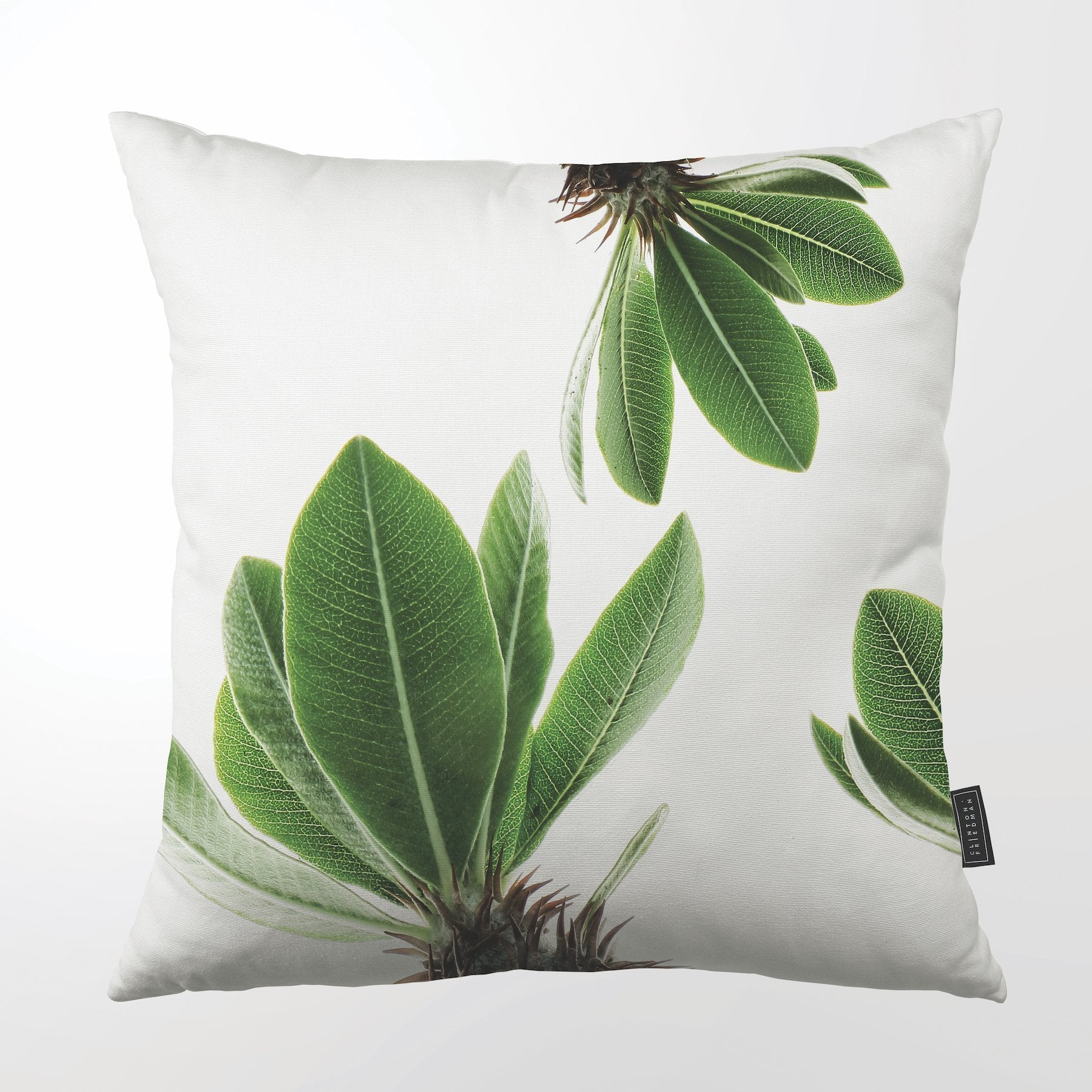 CLINTON FRIEDMAN USA NEW YORK ST VERDE THROW PILLOW