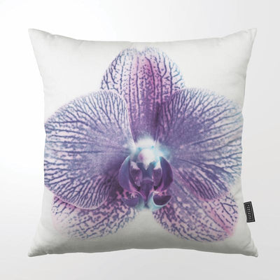 CLINTON FRIEDMAN USA NEW YORK PURPLE ORCHID THROW PILLOW