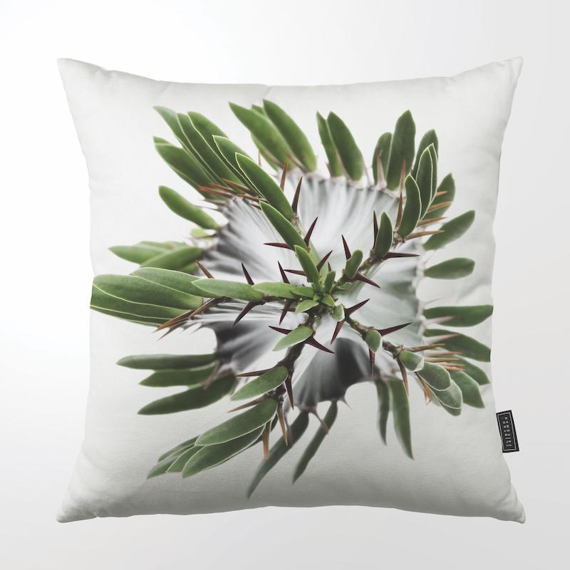 CLINTON FRIEDMAN USA NEW YORK GRASS THORN FLOWER THROW PILLOW