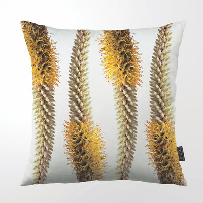CLINTON FRIEDMAN USA NEW YORK SPICATA ALOE THROW PILLOW