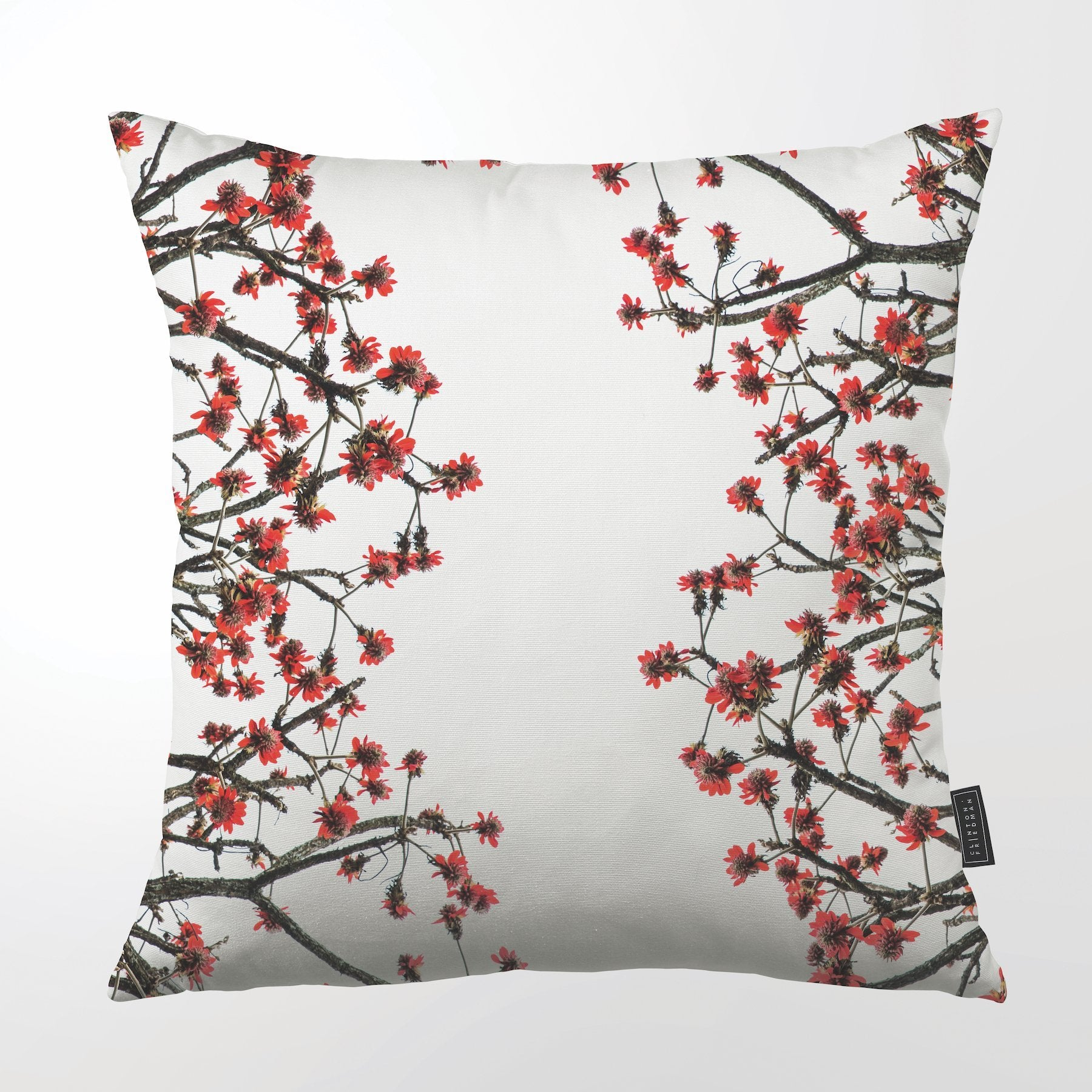 CLINTON FRIEDMAN US NEW YORK ERYTHRINA LATISSIMI THROW PILLOW