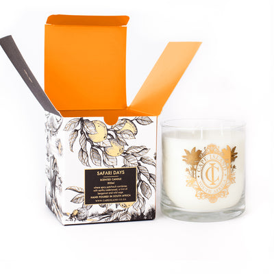 SD-large-candle-2.jpg