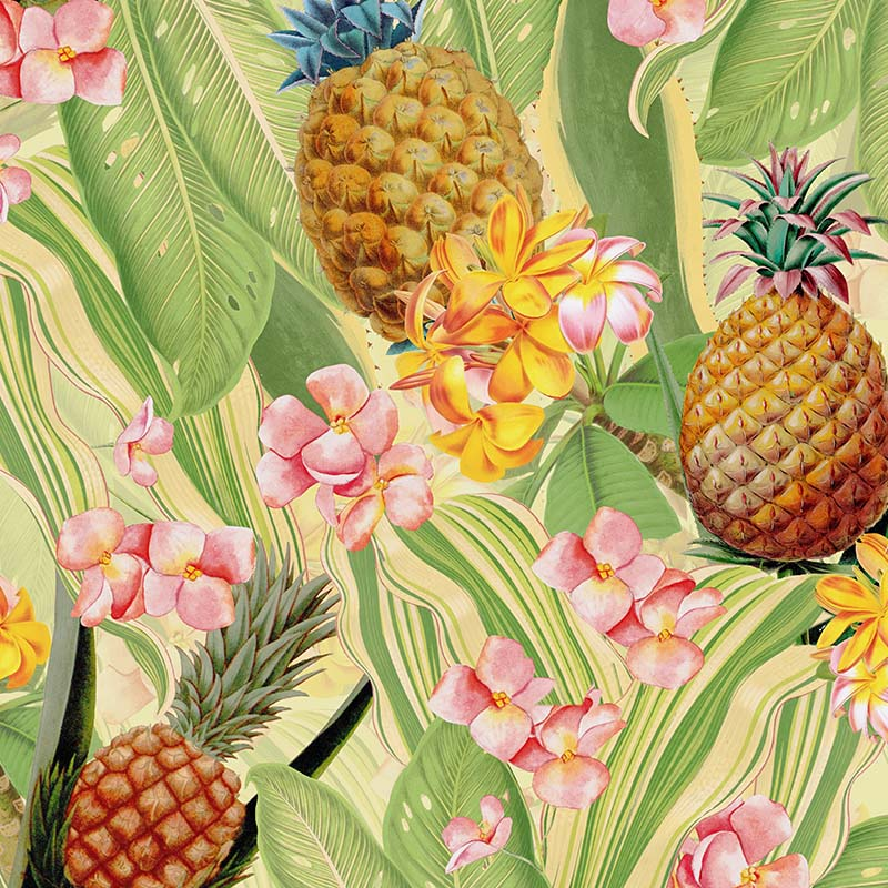 Tropical Leaves Pineapples and Plumeria Flowers – Soft