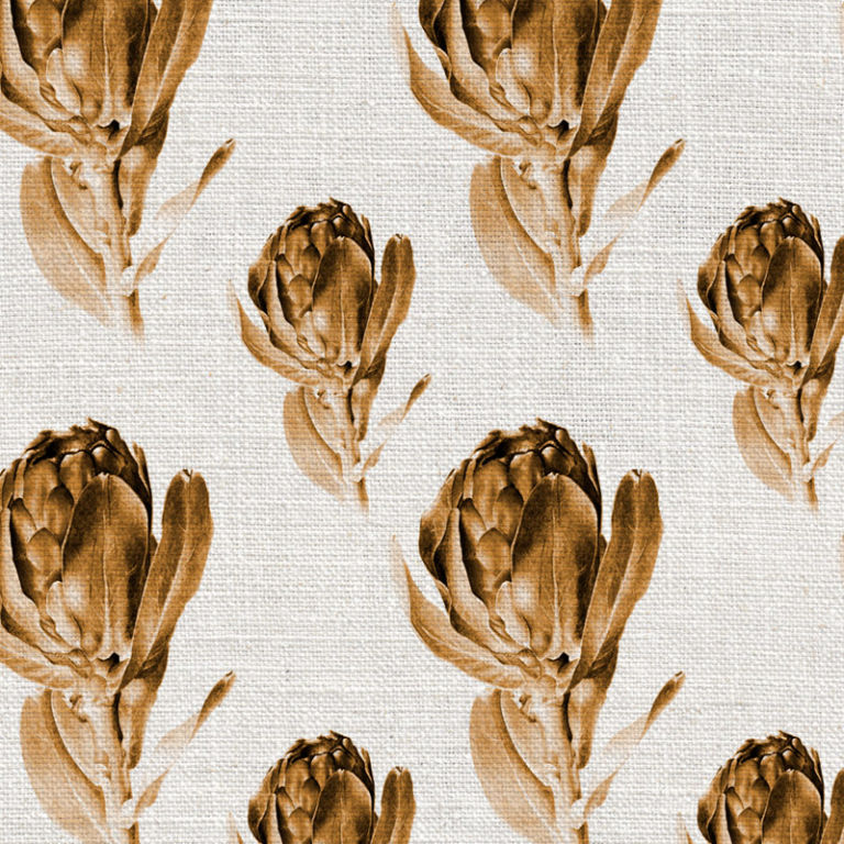Protea Grandiceps Sepia by Robin Sprong at SARZA. Botanical, Robin Sprong, Wallpaper, Willie Schlechter